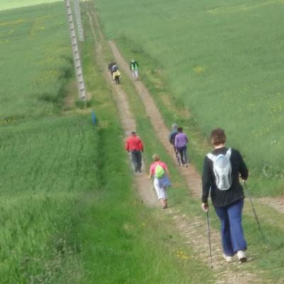Marche nordique du 11 mai tous niveaux