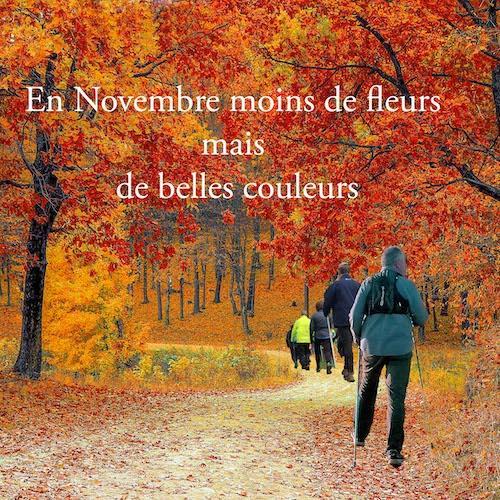 Novembre ok